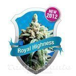 ROYAL QUEEN SEEDS - Royal Highness CBD