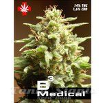 PURE SEEDS - B3 Medical