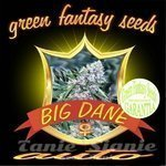 GREEN FANTASY SEEDS - Auto Big Dane
